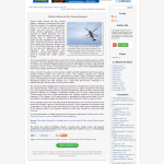 Blogging sample Matthew Everett